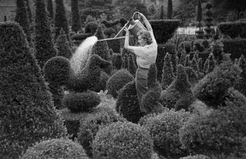 "Kurt Hutton,  ""Kew'da Sulama"" / ""Watering At Kew"""