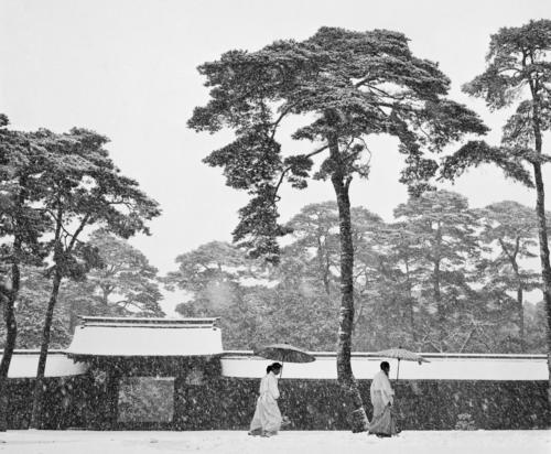 "Werner Bischof ""Courtyard of the Meiji Shrine, Tokyo, Japan, 1951"